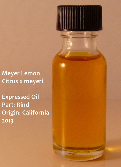 MeyerLemonPicAnya1-3-24-13