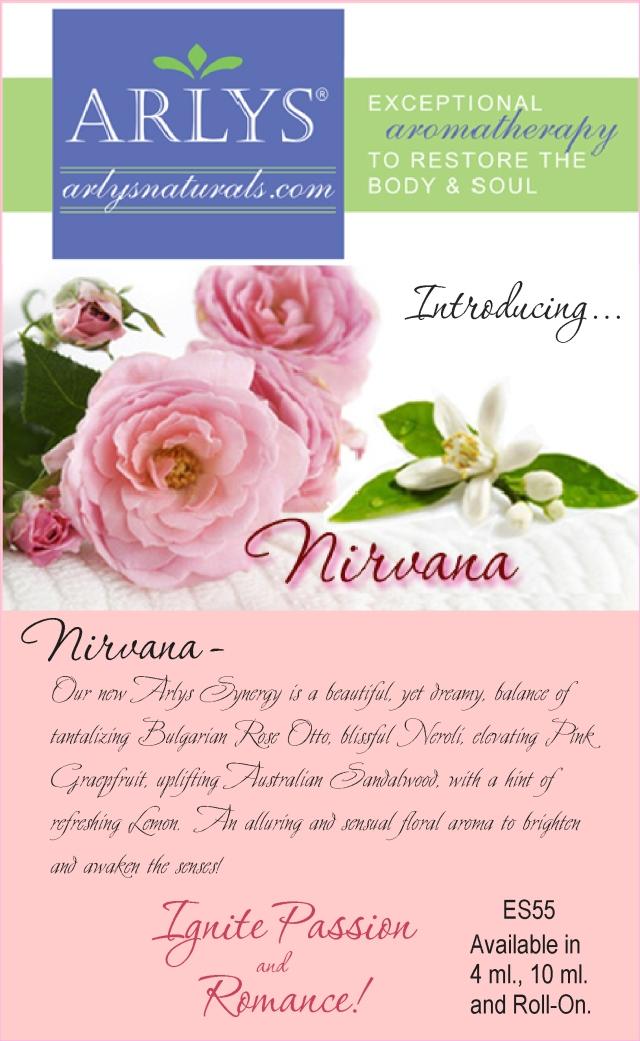 NirvanaSynAdFeb2015