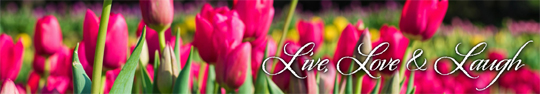 May2015SmallBanner