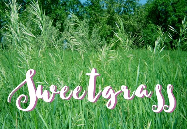 SweetgrassTitlePic1