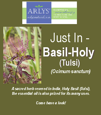 basil-holy-tulsi-ad-oct-2016