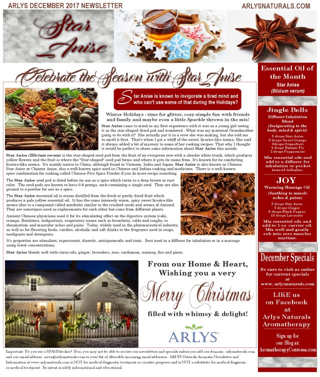 Dec2017StarAniseNewsletter4