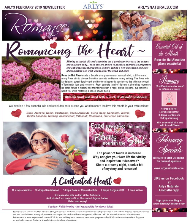 Feb 2019 Newsletter Rose2