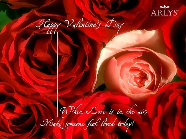Happy Valentines Day Pic1