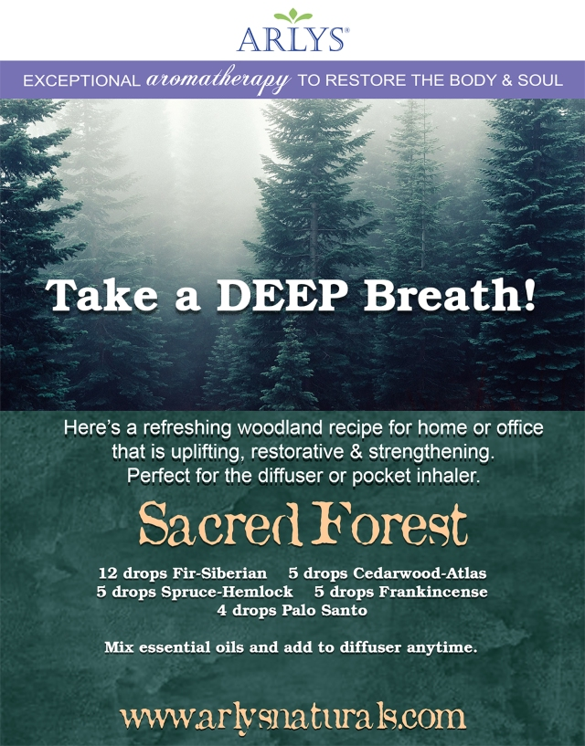 Sacred Forest Recipe Jan 2020